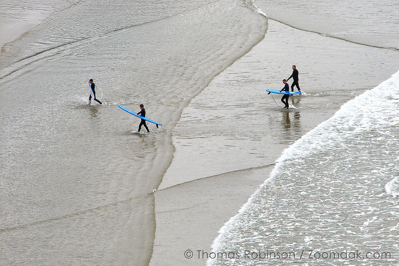 A group of surfers head back into shore at Devil's Punchbowl State Park on the Oregon Coast.