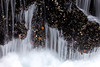 Thor's Well with Sea Stars