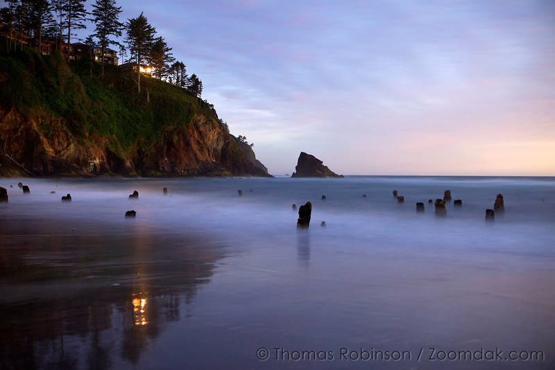 Waves wash around the stumps of the Ghost Forest at night in Neskowin, Oregon. <br /> <br /> Though nobody knows the origins of the ghost forest, it is theorized that sometime within the last 2,000 years a cataclysmic earthquake caused this chuck of forest to drop to sea level. Then preserved by sand and mud, these petrified stumps are around today rather than naturally eroding.
