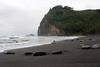 Volcanic rocks lie along the shore of Pololu Beach, a black sands beach, on the big island of Hawaii.