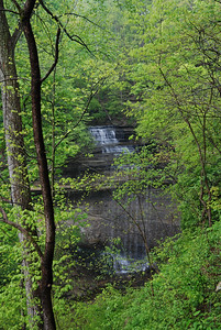 Clifty Falls in April
