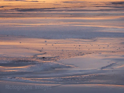 Frozen, Lake Superior,