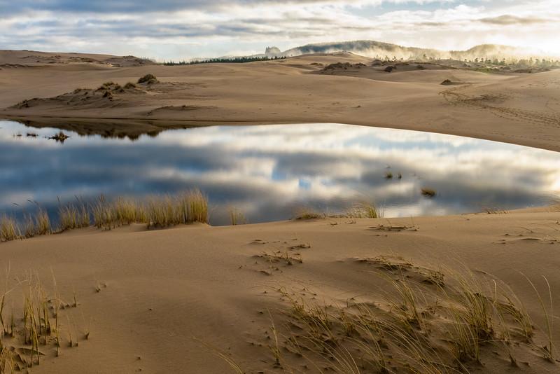Dune Reflection