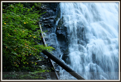 IMG_3591 left of crabtree falls