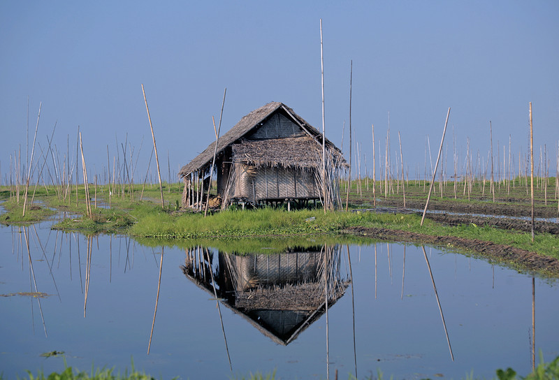 Inle Lake ~ Floating Gardens