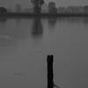 Misty morning, Lago di Mezzola
