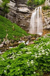 Grand Saut Falls - Varina Patel