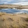 Oregon Dunes Morning