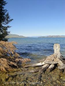 Flathead Lake Fingers