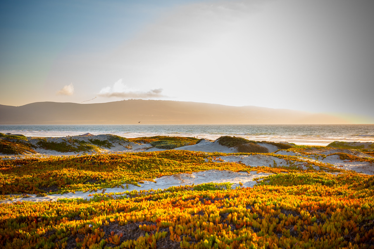 Mexican Pacific Coast