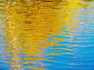 Autumn Colors Reflecting In The Waters