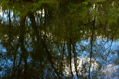Ripples and reflections V
