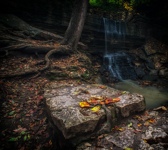 Autumn at Hidden Falls