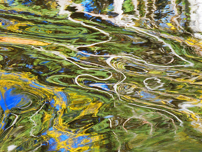 Forest Reflections In The River Waters ; Rictographs Images;