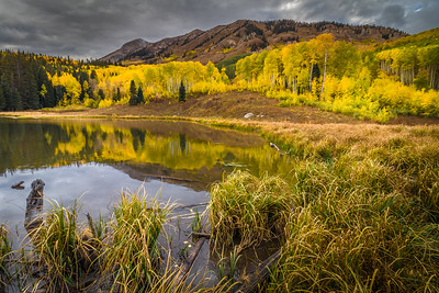 Beaver Pond, CO
