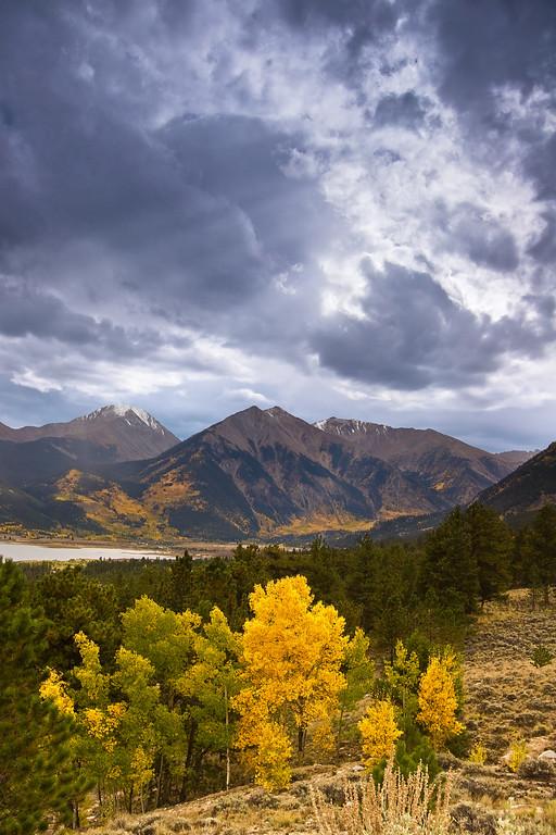 Autumn Storm - Varina Patel