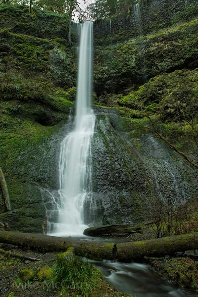 Winter Falls (Silver Falls State Park)