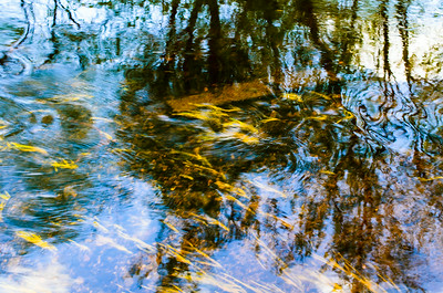 Ripples and reflections IV