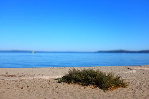 Alki Beach, Seattle, WA | August 2016