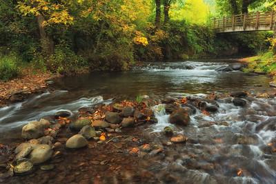 Autumn In Lacomb
