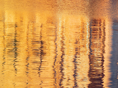 Golden Light Being Reflected From Grain Elevators, Rictographs Images