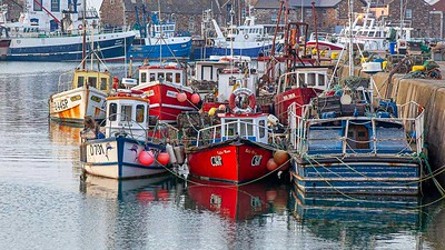 Harbour at Howth