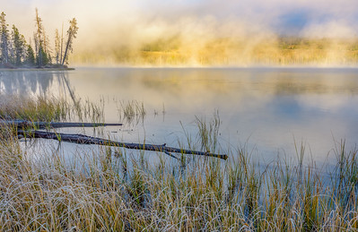 Foggy Morning at Little Redfish Lake