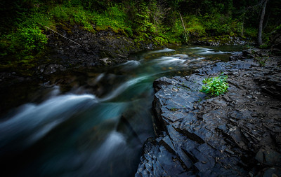 Slate River | Crested Butte, CO