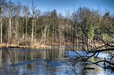 Pond HDR with partial ice