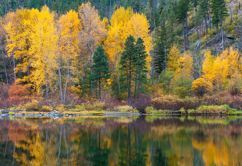Wenatchee Reflections