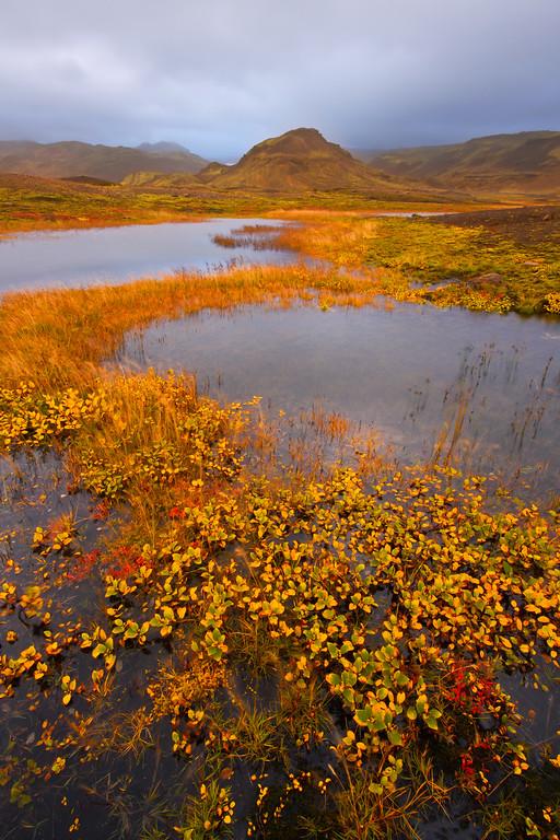 Autumn in Iceland