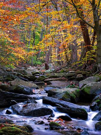 Rock Run Waterfall - Susquehanna State Park