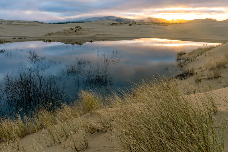 Daybreak at the Oregon Dunes