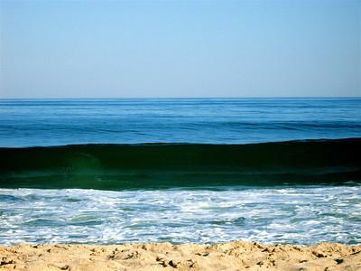 Sea Shades