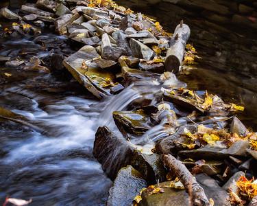 Beaver Creek (219)-300