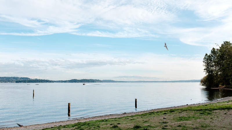 Lake Washington | Seattle, WA | September 2015