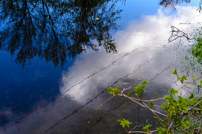 Ripples and reflections VII
