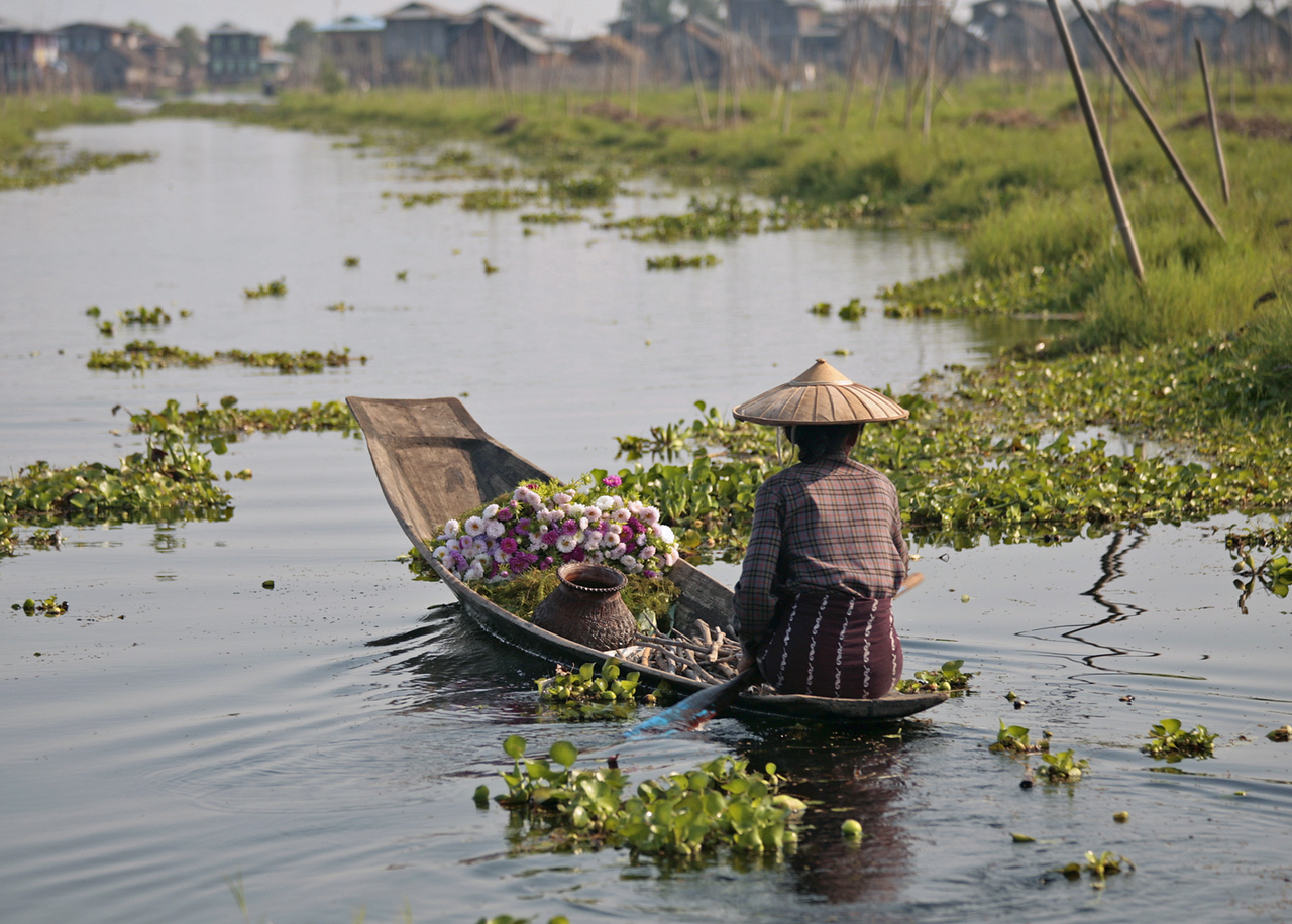 Inle Lake ~ Flowers bound for Market Day