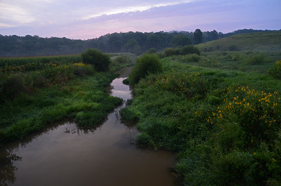 Salt Creek Tributary