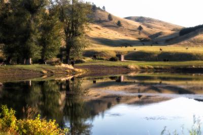 Beaver Creek (124)-300
