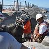 Pier Repair