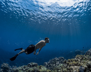 Freediver over the reefs of Grand Cayman.