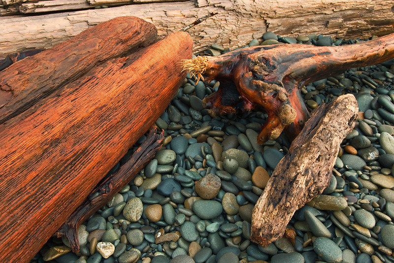 Driftwood at Ruby Beach, Washington