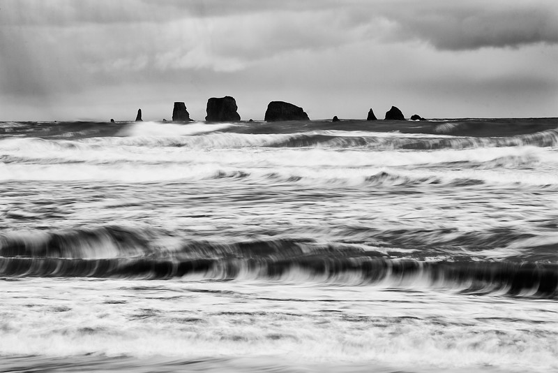 La Push Needles, Washington