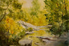 "Water Trail (Hawn State Park, Missouri)<br /> 13"" x 21""<br /> #2227"