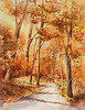 (Katy Trail in Fall)<br /> <br /> (SOLD