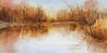 Creve Coeur Lake<br /> SOLD