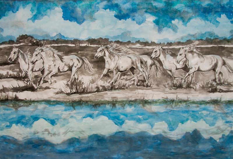 Wild Horses of Camargue Running Free