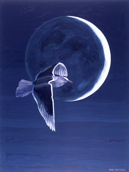 """Night Flight"" print"