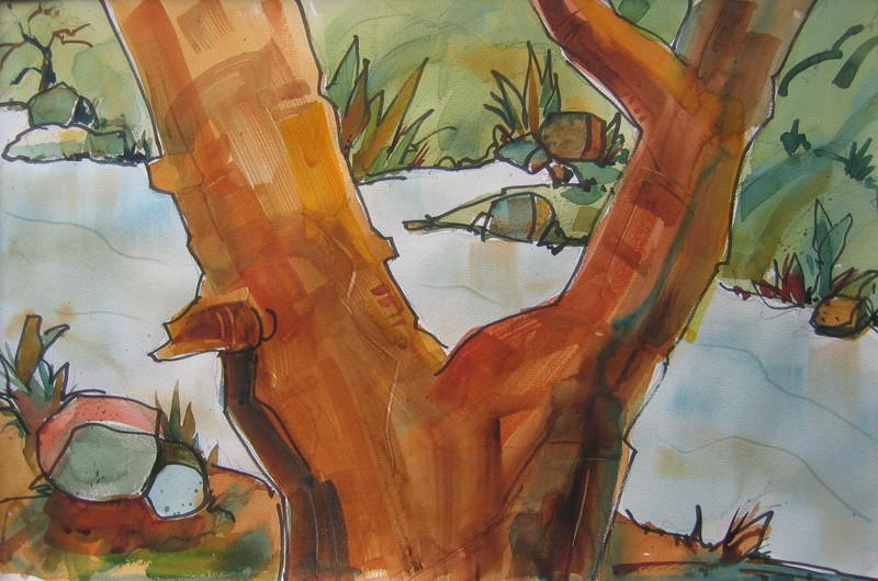 Backyard Tree  14x21